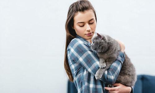 Кошкотерапия. Лечение кошками