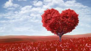 как понять что любишь