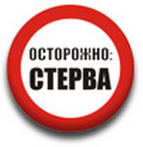 Стерва 2