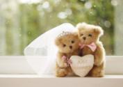 юбилей свадьбы 35 лет